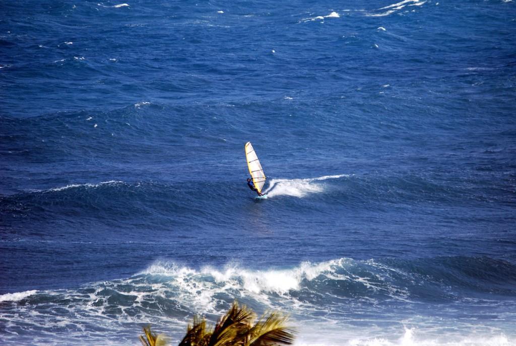windsurfing Taiwan, Jinzun Point, lone sailor